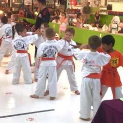 Kids learning taekwondo techquines